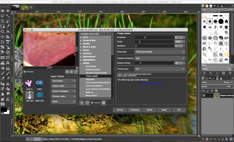 McGimp 2.9.5 Color Corrected and GMIC