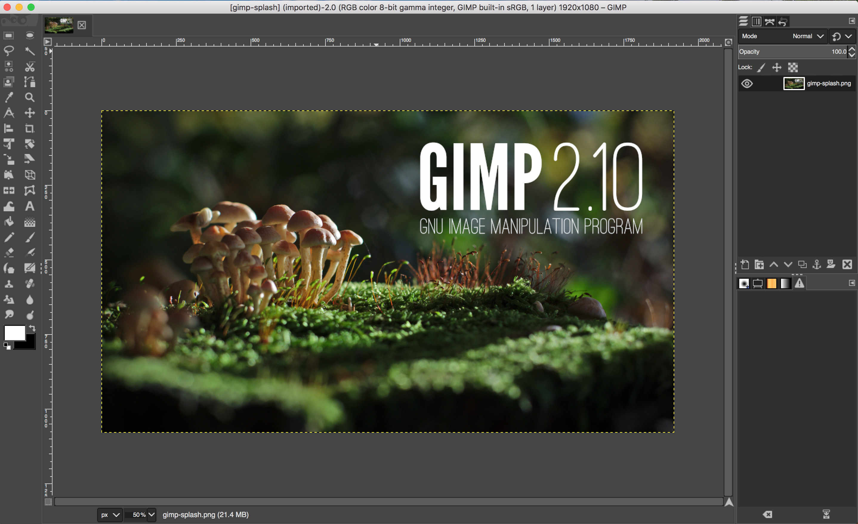 McGimp 2.10.0 Std